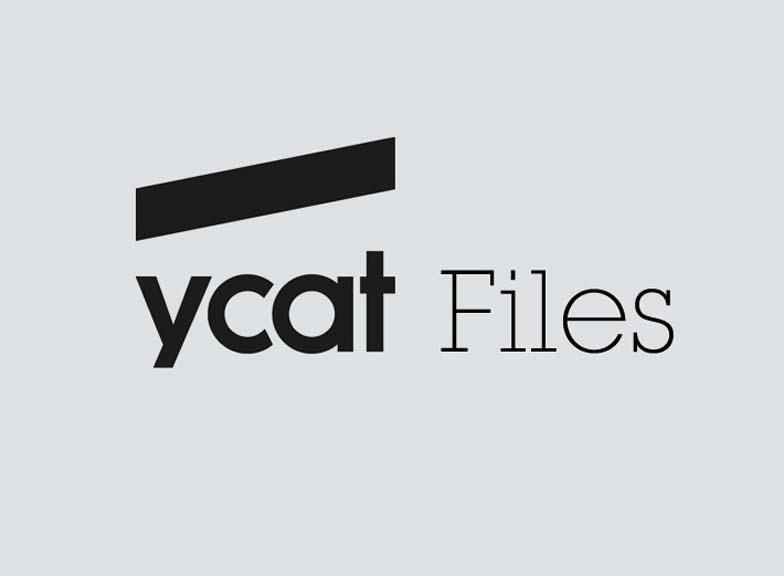 YCAT Files