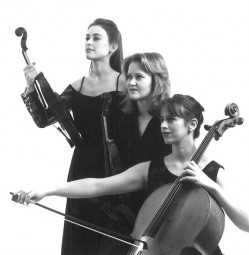 Leopold Trio 4